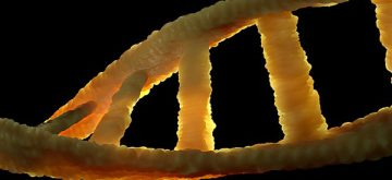 Using genes to attack disease with precision